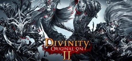 Divinity: Original Sin 2 EUROPE