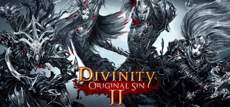 Buy Divinity: Original Sin 2 for Steam PC