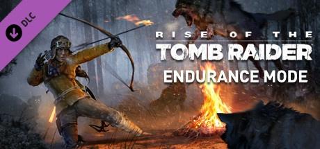 Endurance Mode