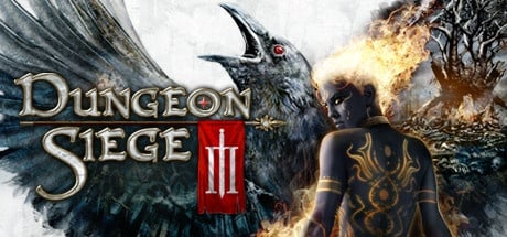 Buy Dungeon Siege III for Steam PC