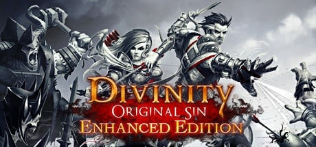Divinity: Original Sin - Enhanced Edition Steam Edition