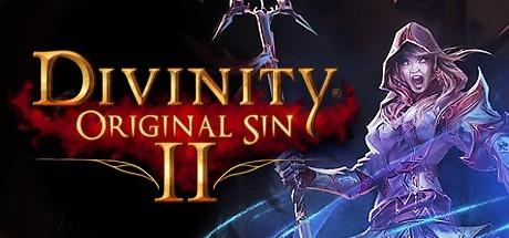 Divinity: Original Sin 2 GOG Edition