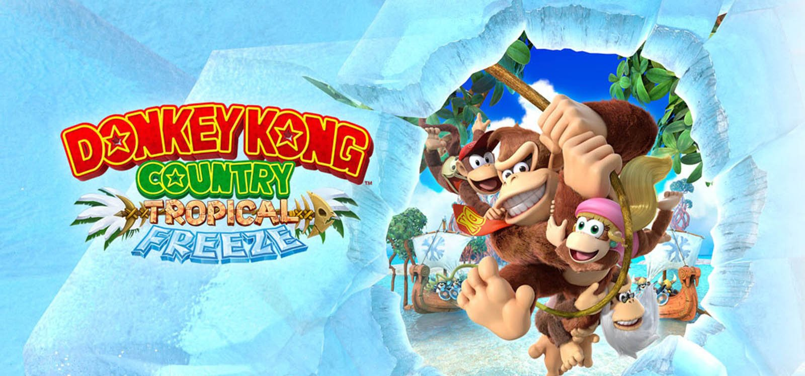 Donkey Kong Country Tropical Nintendo Switch