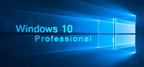 Windows 10 Professional OEM PC CD Key