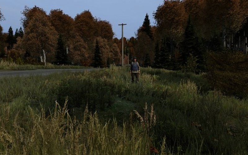 how to get dayz on mac