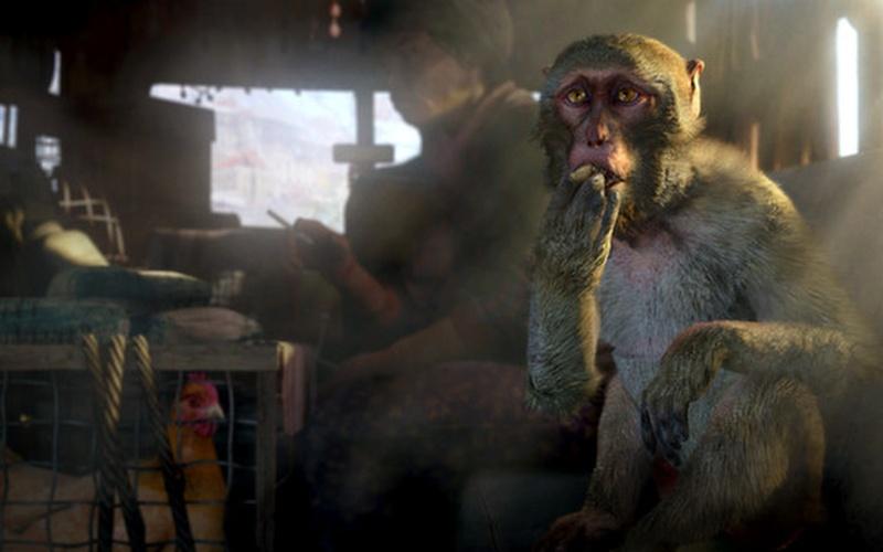 Far Cry 4 Steam Edition