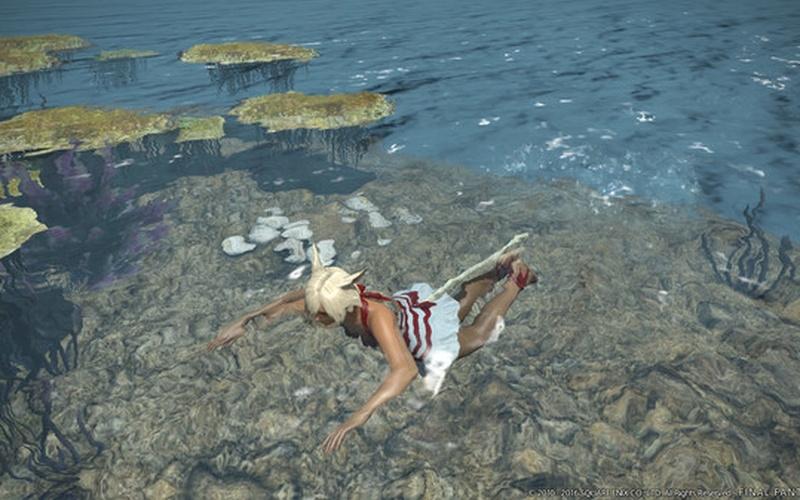 FINAL FANTASY XIV: Stormblood Steam Edition