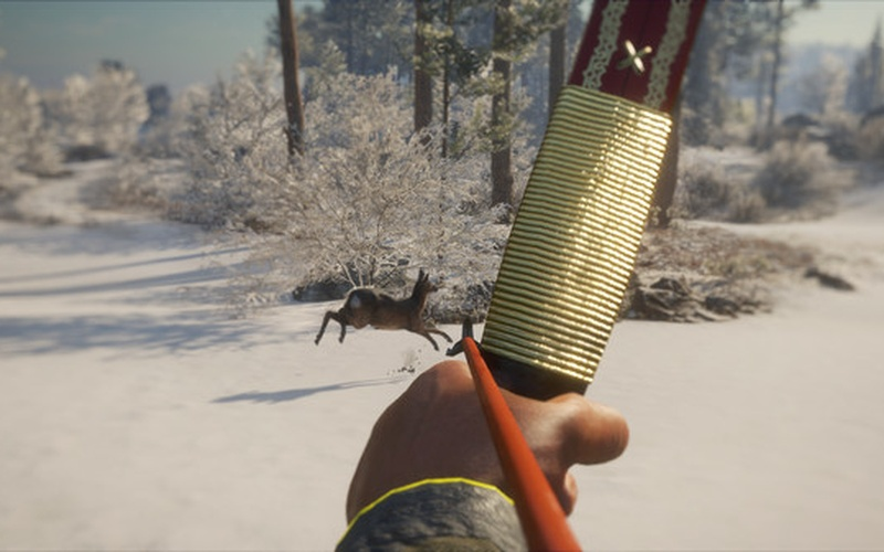 theHunter: Call of the Wild - Weapon Pack 1