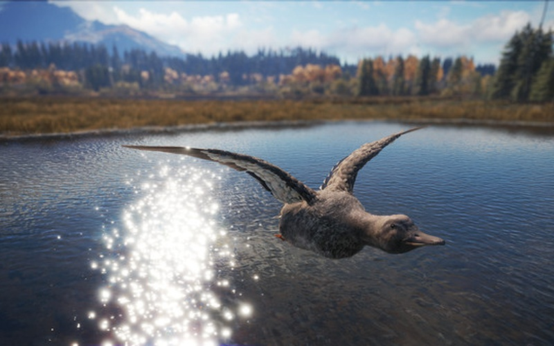 theHunter™: Call of the Wild - Duck and Cover Pack
