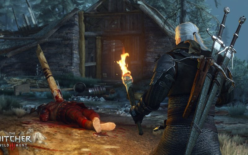Image result for THE WITCHER 3 : Wild hunt